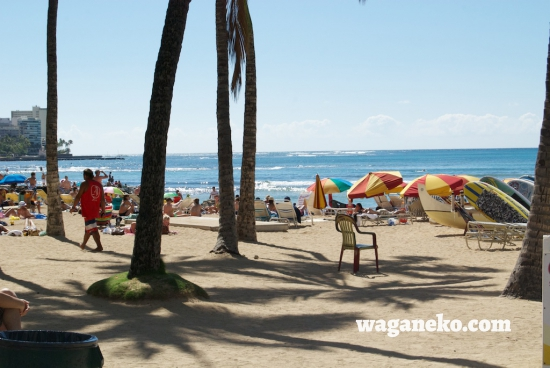 Waikiki beach with parasols