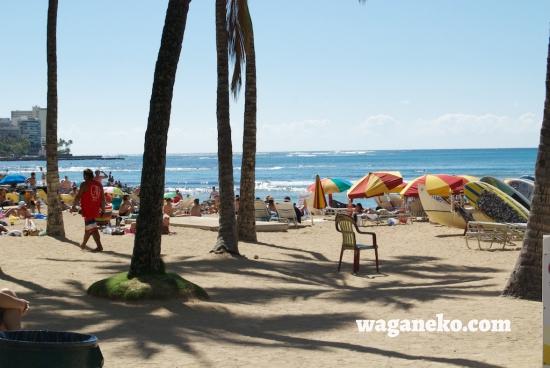 Waikiki beach with parasols